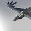 Raven Flying 01