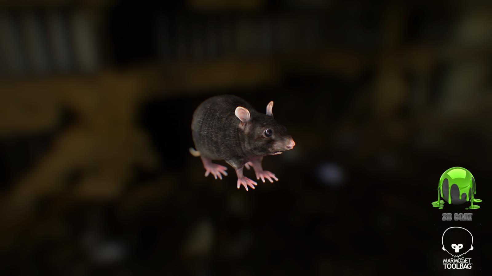 Rat Low poly