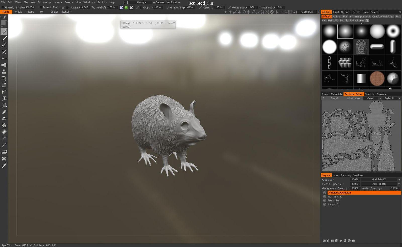Rat details 1