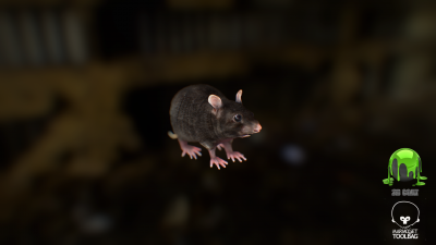 Rat Low poly