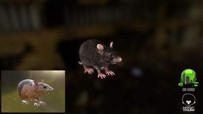 Rat Low poly final