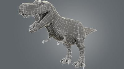 Wireframe profile Rex