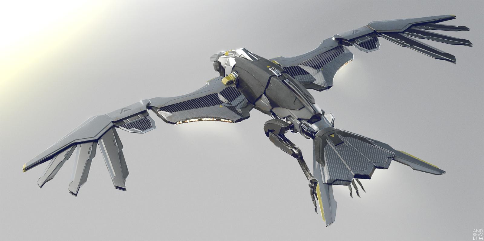 Raven Flying 02