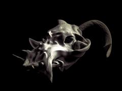 skull44.png