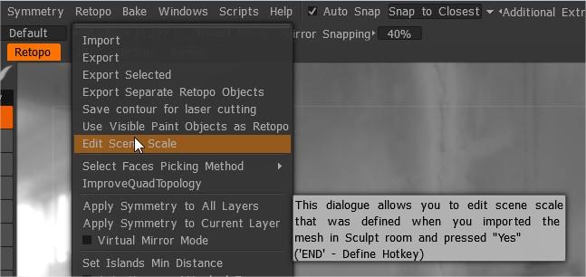 EditSceneScale.jpg