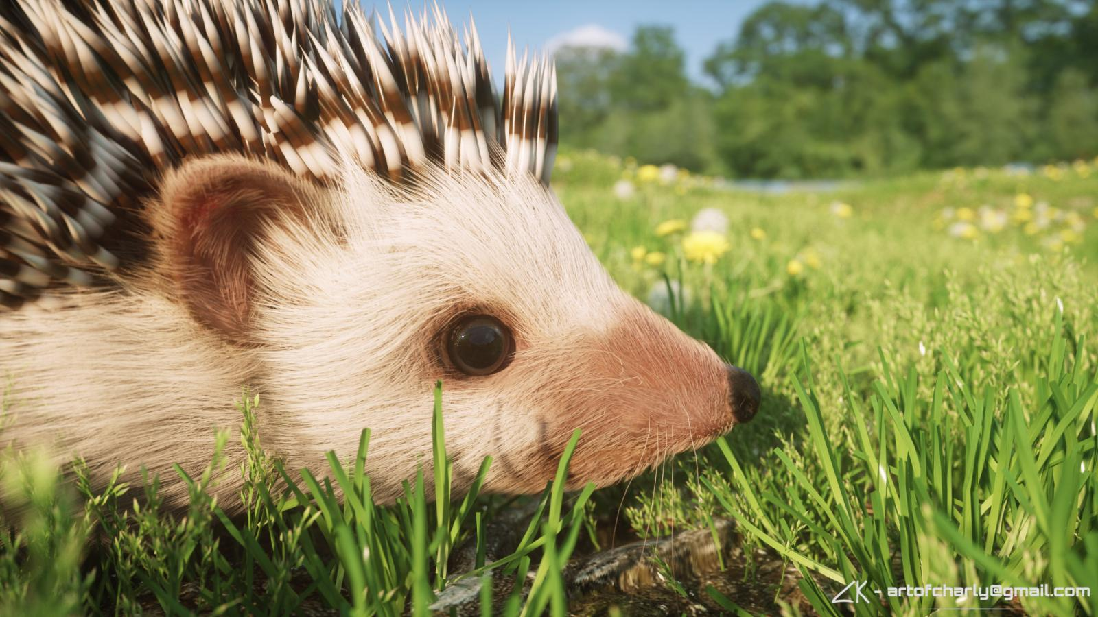 Hedgehog 2017