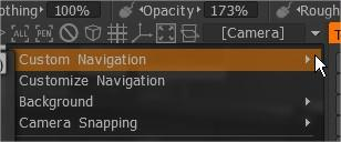 Camera  Custom Navigation.jpg