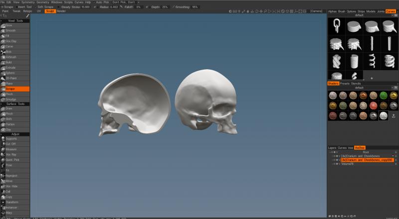 skull.thumb.PNG.b883a66c879ba7b2de03cf06cbfe9063.PNG