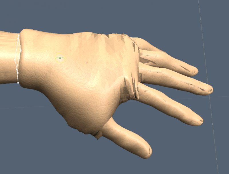 coat Hand.png